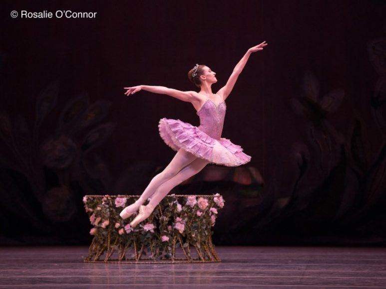 A Magical Christmas Classic Goh Ballet Presents The Nutcracker 2